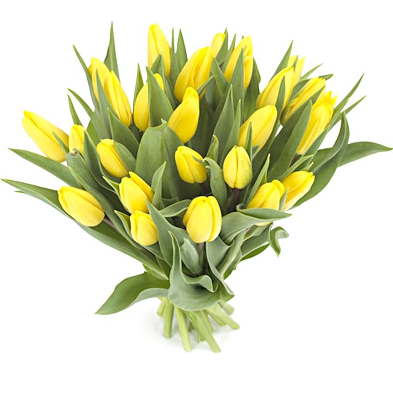Букет из 7 желтых тюльпанов